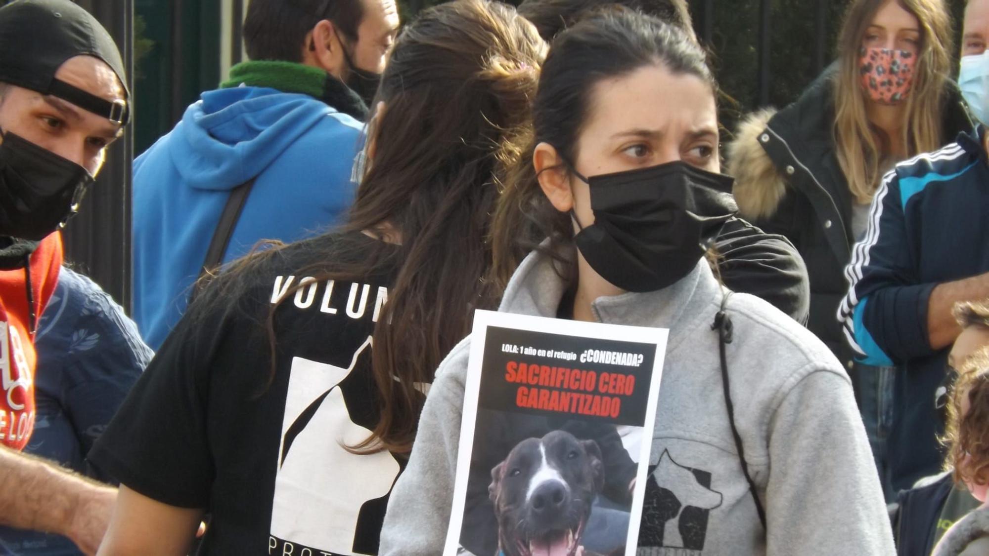 """Una plataforma animalista de Paterna pide """"paralizar"""" las obras del nuevo refugio por irregularidades"""