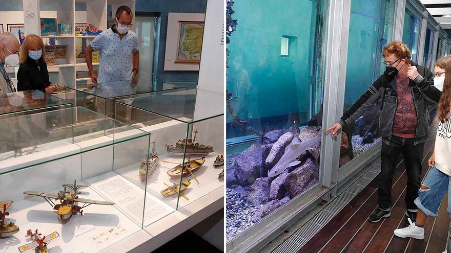 Verano entre obras de arte y fauna marina