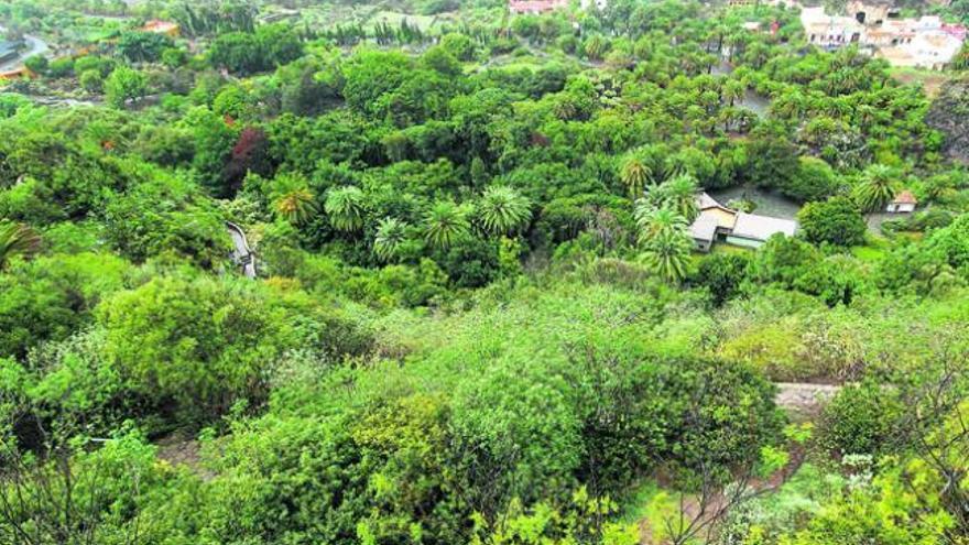 El Jardín Canario Viera y Clavijo reabre sus puertas