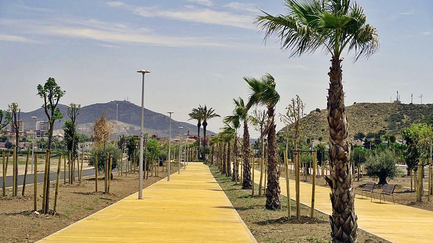 Críticas por la falta de especies autóctonas en los jardines del Plan Rambla en Cartagena