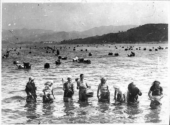 Mariscadoras en la ría de Vigo.