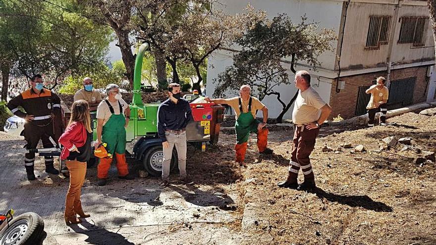 La UPV creará un proyecto de reforestación de Santa Anna