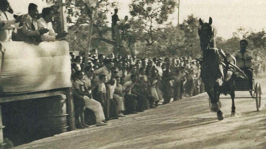 Unas carreras de trote en s'Alamera