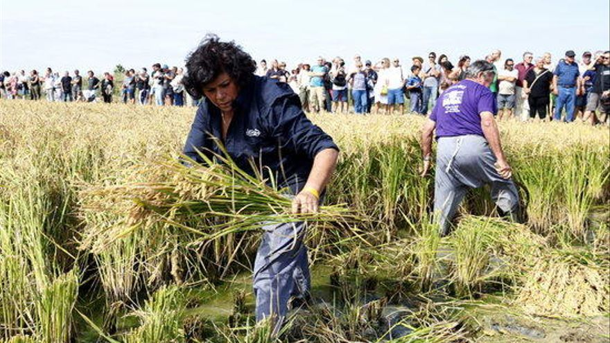 Agricultura abona 575.253 euros del 10% pendent dels ajuts de la PAC del 2019