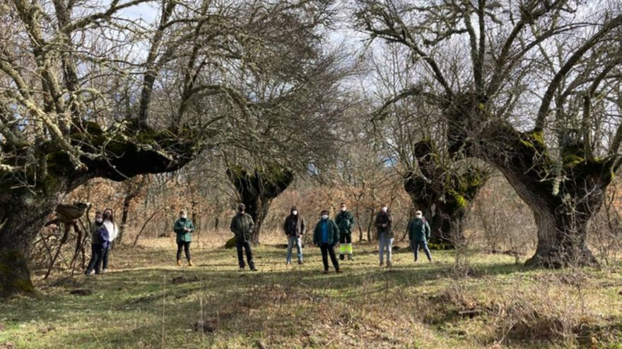San Pedro de Ceque impulsa el turismo natural con rutas de bosques milenarios