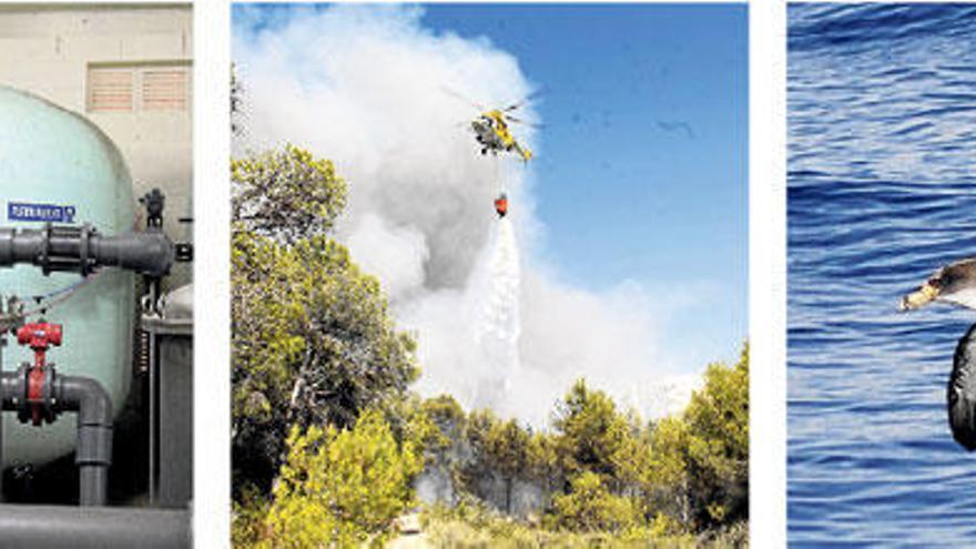 Mallorca debattiert Erhöhung der Touristensteuer