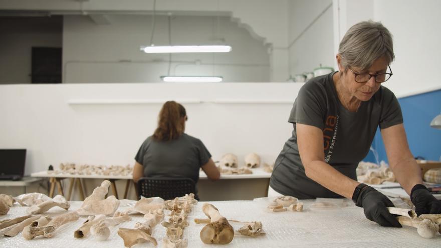 Recuperados 10.000 huesos del mayor repertorio humano de aborígenes de Canarias