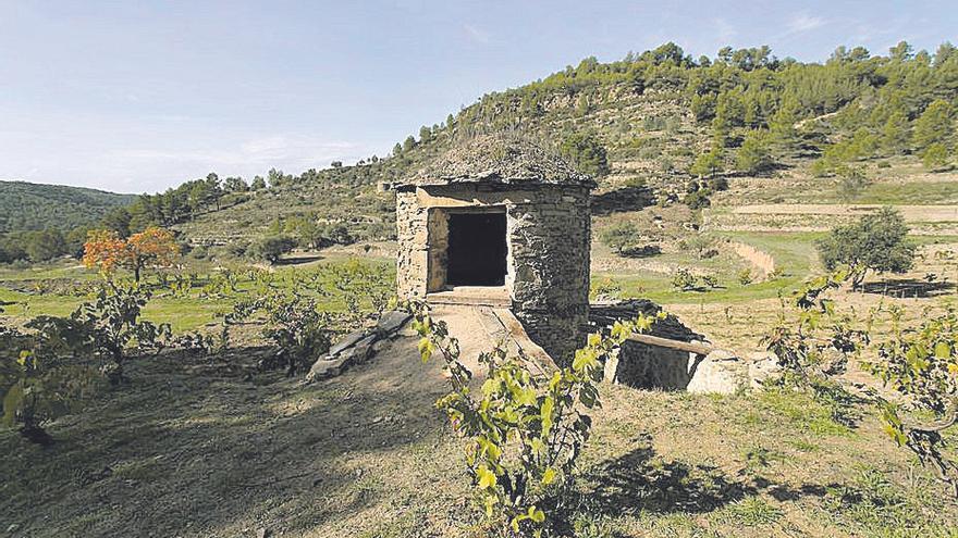 Es reconeix el vi Abadal Arboset 2017, elaborat en tina exterior de pedra seca