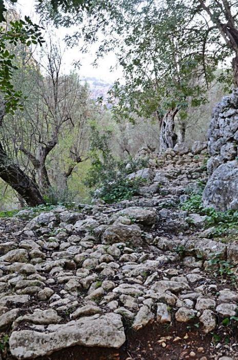 Versteckte Baracken, fast vergessene Geschichten und ganz viel Plackerei: Der Barranc de Biniaraix bei Sóller ist viel mehr als idyllische Wander-Kulisse