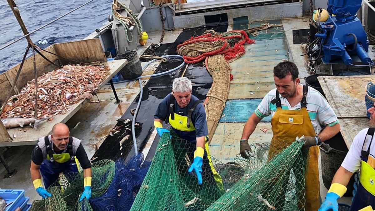 El turismo pesquero se convierte en una experiencia única y sostenible.   LEVANTE-EMV