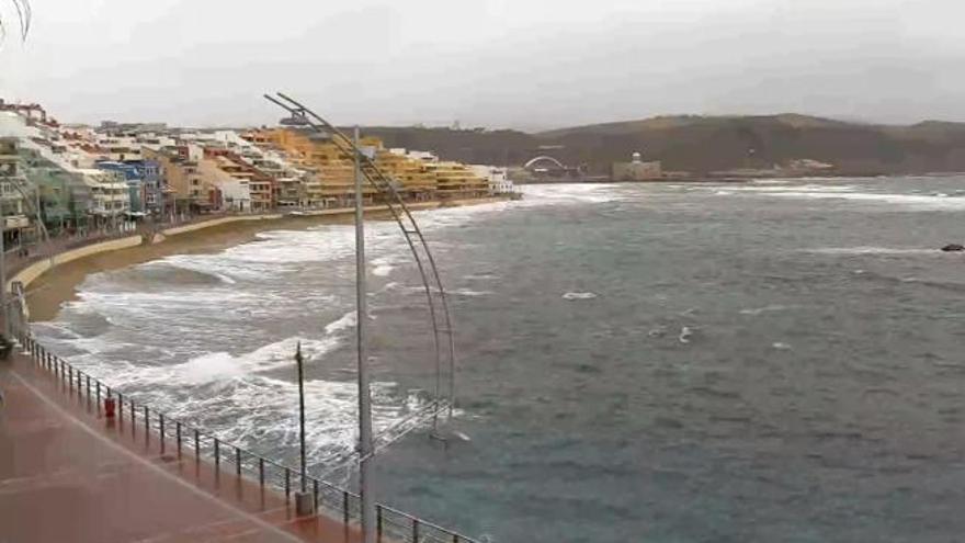 Consulta El Tiempo En La Playa De Las Canteras La Provincia