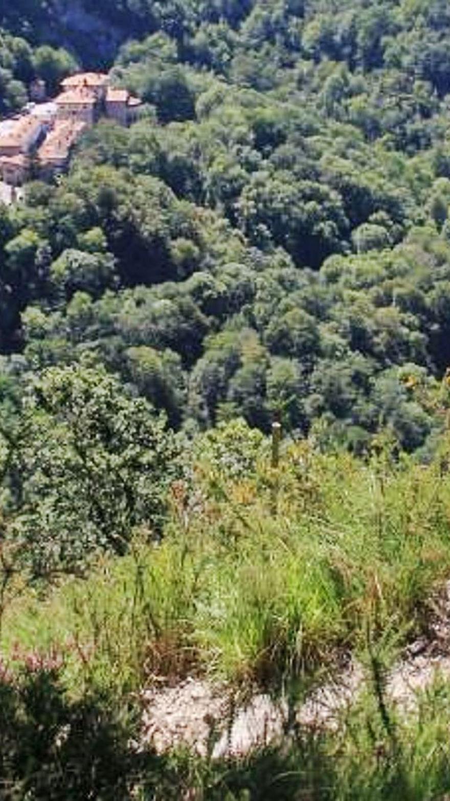 Un verano de récord: el turismo rural que se inventó en Asturias celebra su éxito con el objetivo de ganar visitas en invierno