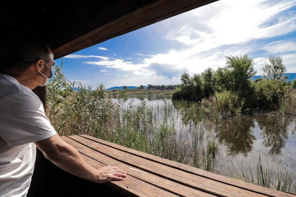 La albufera de Gaianes sobrevive al verano