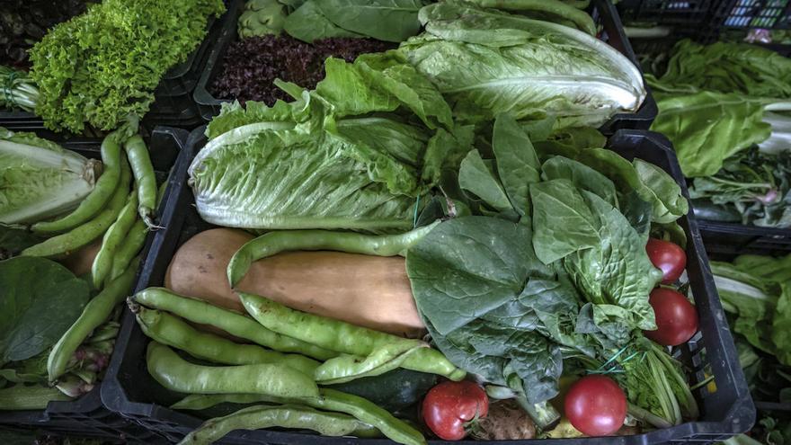 Unió de Pagesos pide a los ayuntamientos que compren productos locales