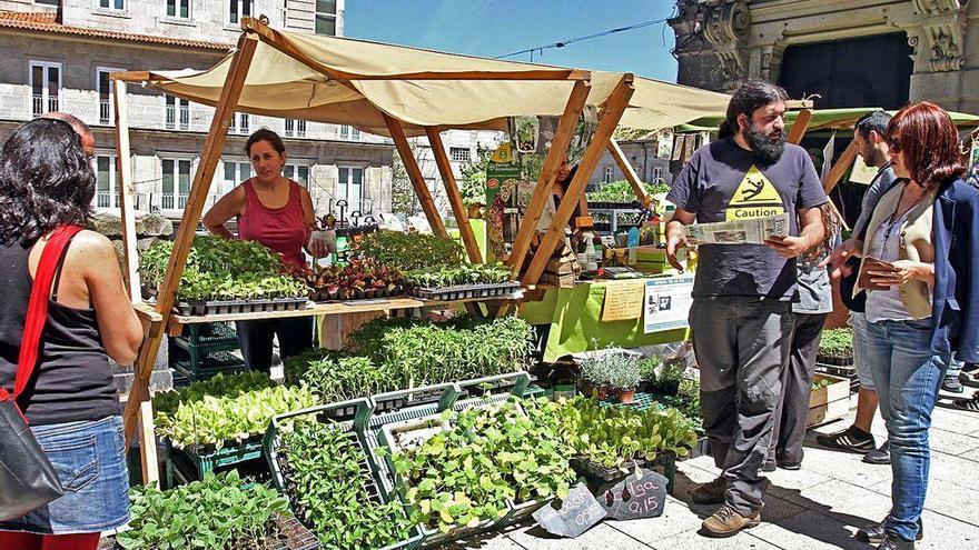 "Medio Rural destina 2,3 millones para impulsar ""mercados singulares"""