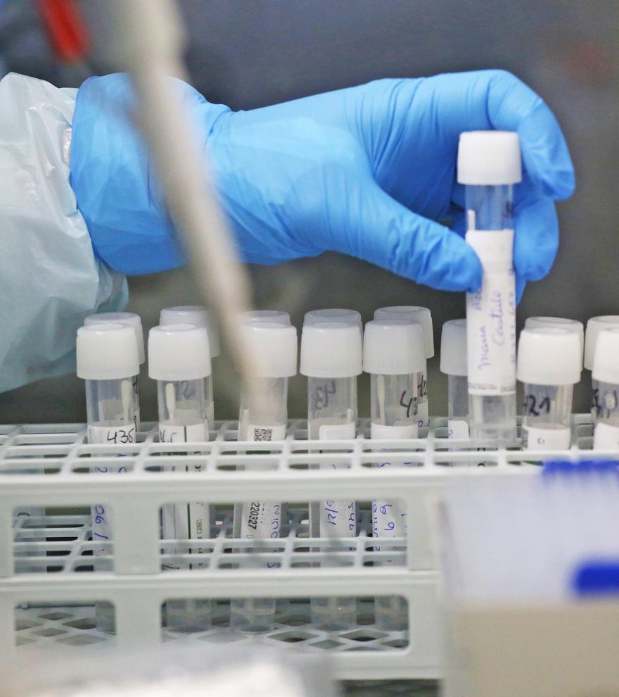Descubren un método que bloquea la infección del coronavirus