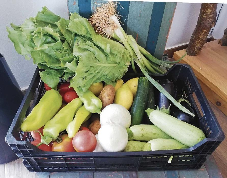 Las cestas contienen alimentos de temporada y locales.