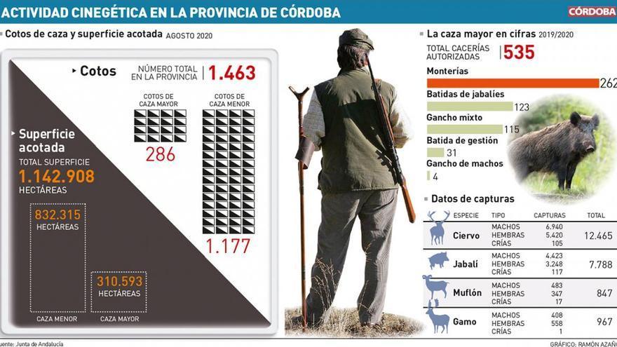 El covid reduce un 50% la caza menor en Córdoba