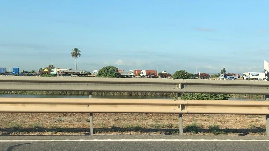 Los camioneros dejan de operar en terminales del Puerto de València por las largas colas