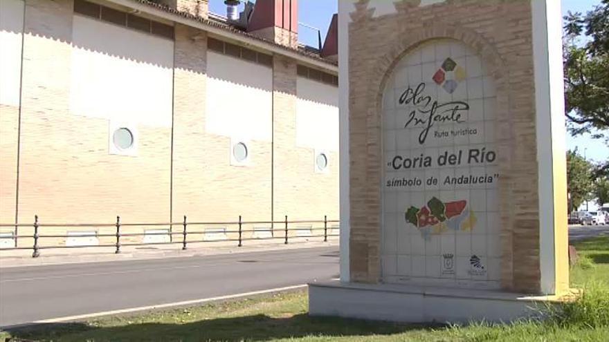 Investigan en Sevilla un brote de meningitis vírica asociado a mosquitos