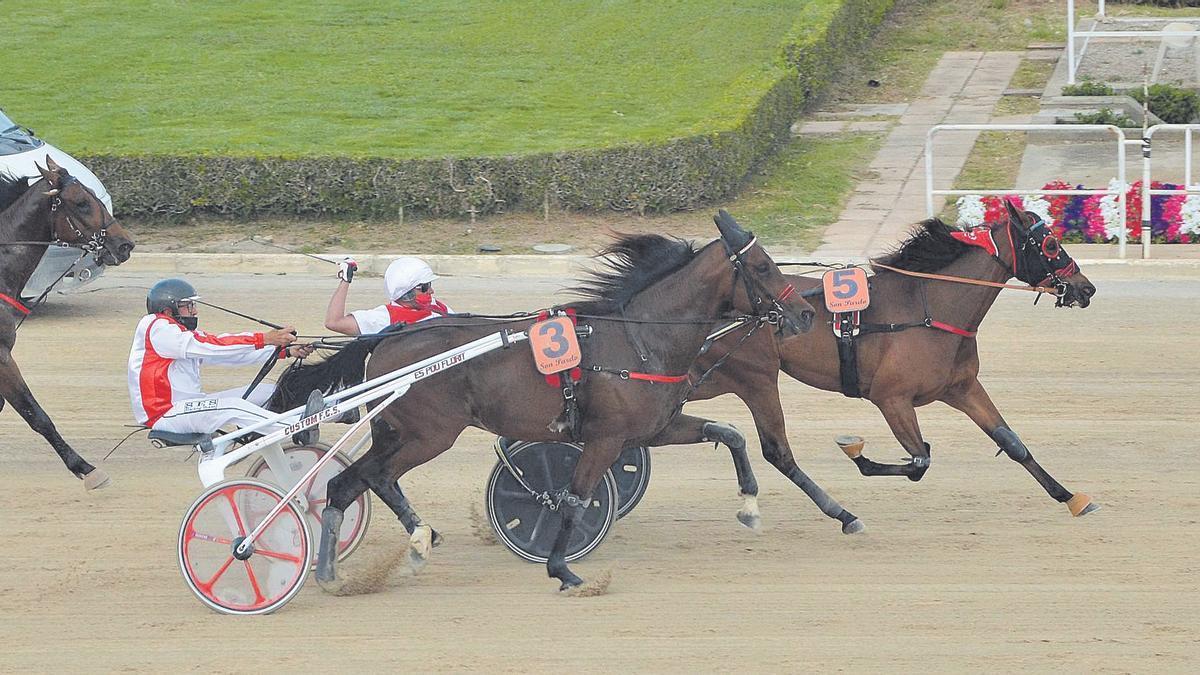 In Love Star (5), con Guillem Andreu, resistiendo a Ivory de Lyal (3) en los últimos metros de carrera.