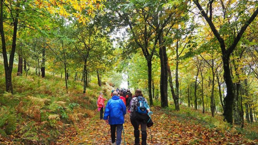 Vigo te guía ya gratis por 13 de sus mejores rutas de senderismo