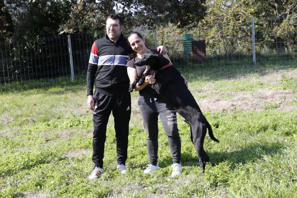 Gómez junto a su esposa Paula y uno de sus perros. // José Lores