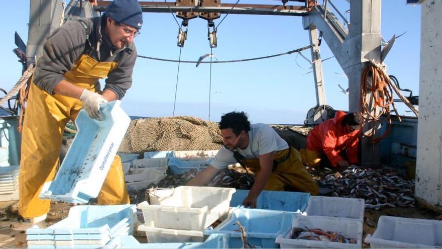 Urlaub auf dem Fischkutter: Mallorca exportiert Erfolgsmodell
