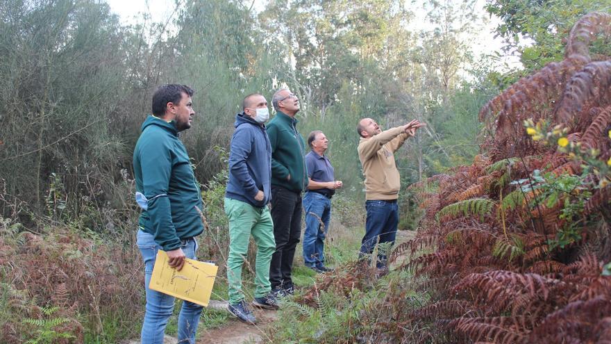 Arranca la conversión del monte quemado de Nigrán en el primer parque forestal del Val Miñor