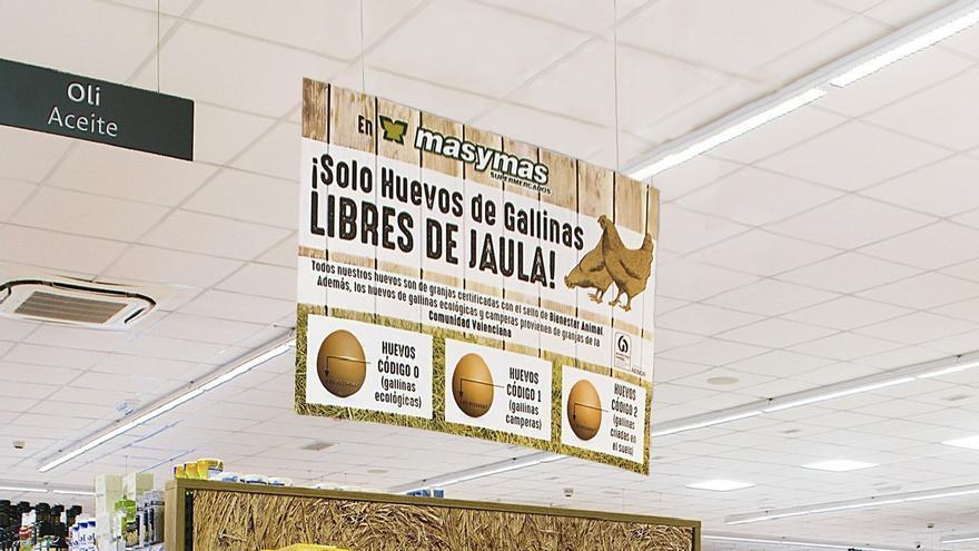 Masymas ya solo comercializa huevos de gallinas libres de jaula