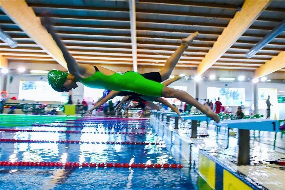 Trofeo Ciudad de Zaragoza de natación
