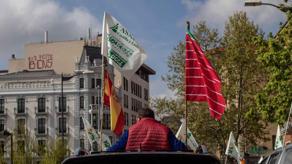 Manifestación contra la sobreprotección del lobo en Zamora.