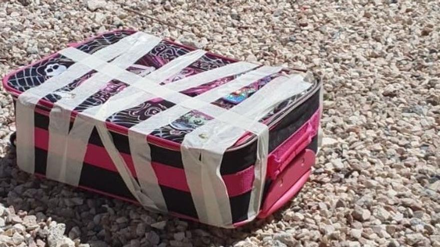 Buscan a quien abandonó al sol en una maleta cerrada herméticamente a cinco gatitos