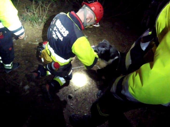 Complicado rescate con perros de dos excursionistas en Ibiza