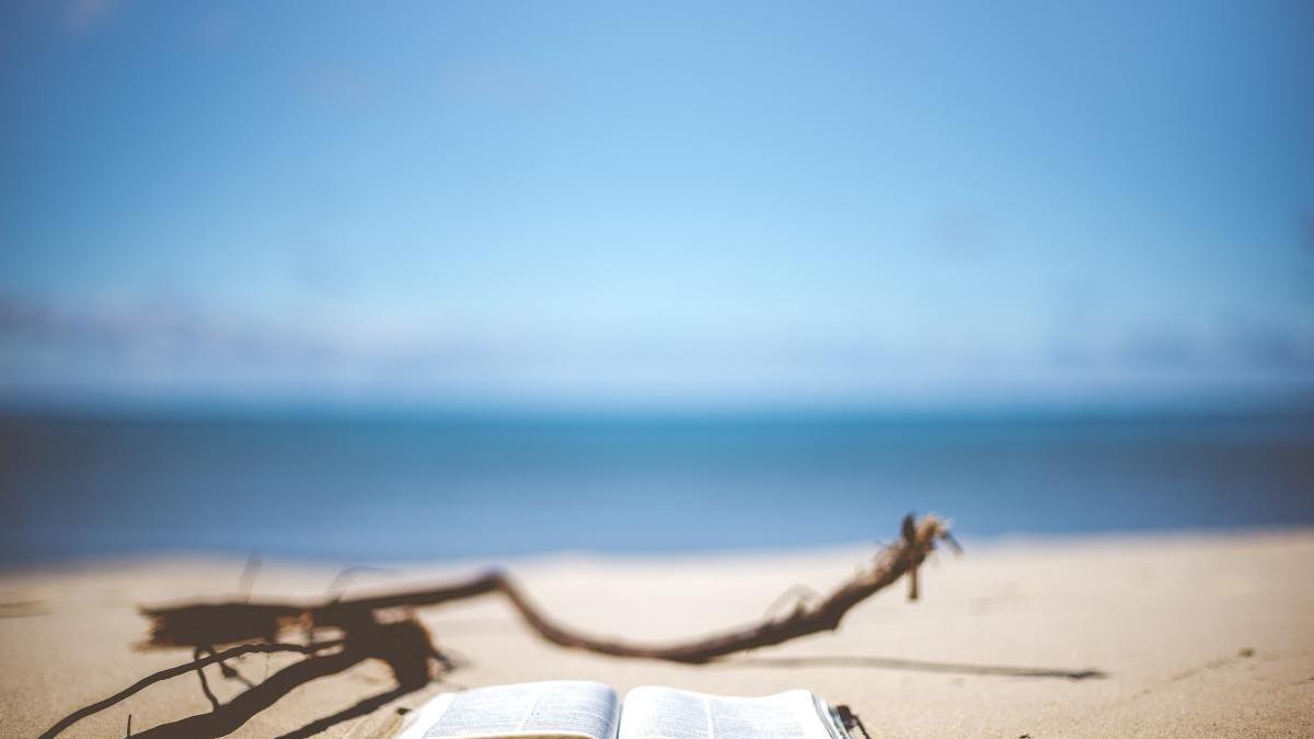 Cuéntanos qué libro estás leyendo este verano