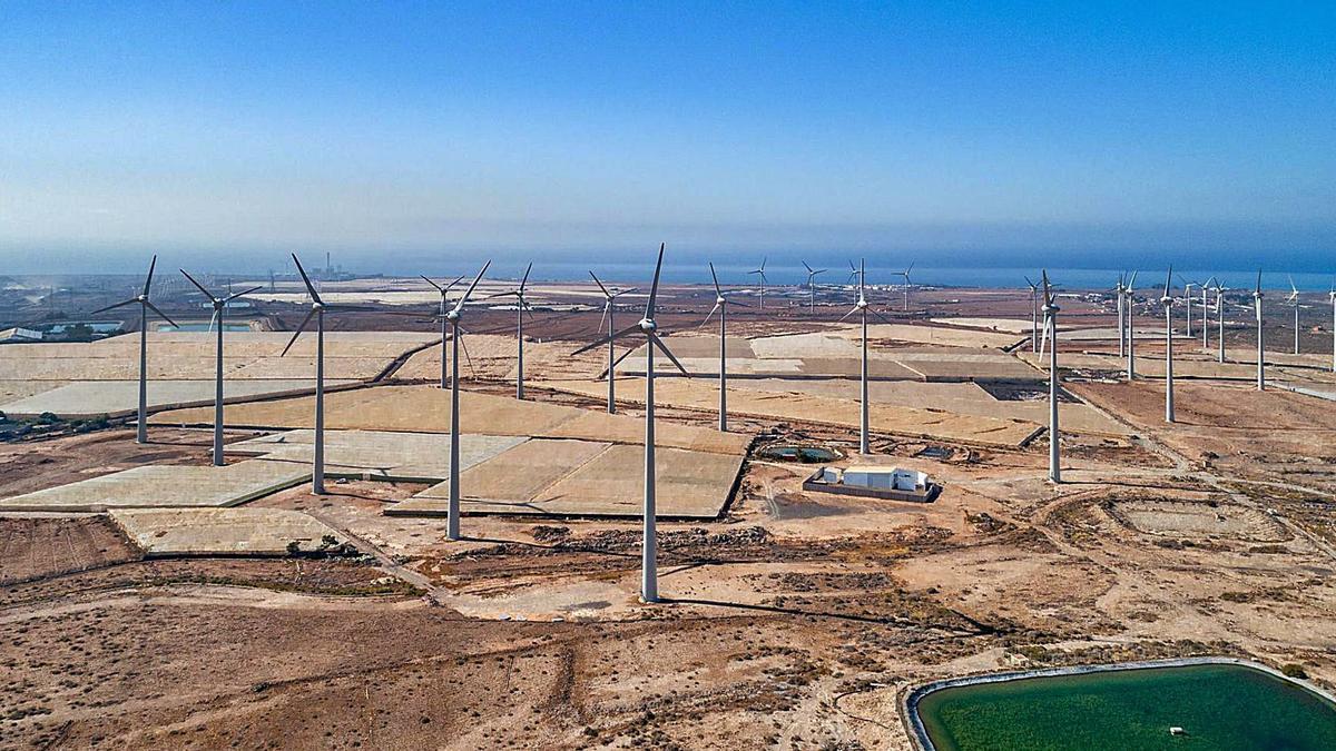 Imagen de uno de los parques eólicos cuya gestión desarrolla Ecoener.     E.D.