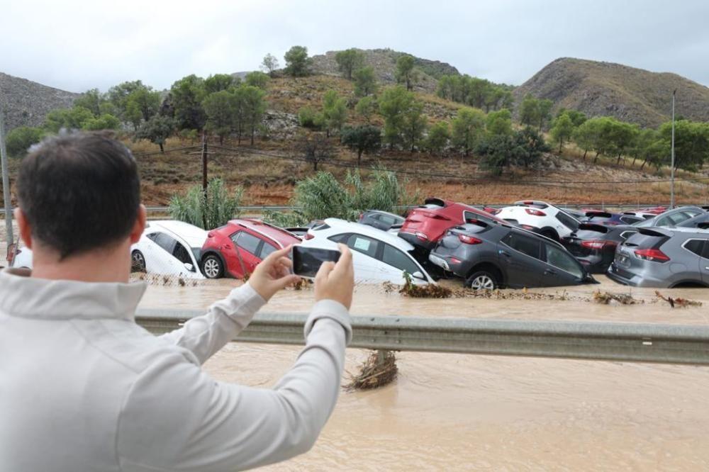 Numerosos vehículos han resultado dañados.