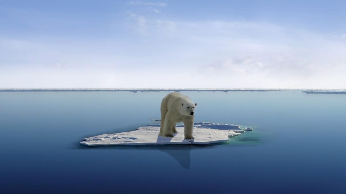 ¿Hacia un Polo Norte sin hielo?