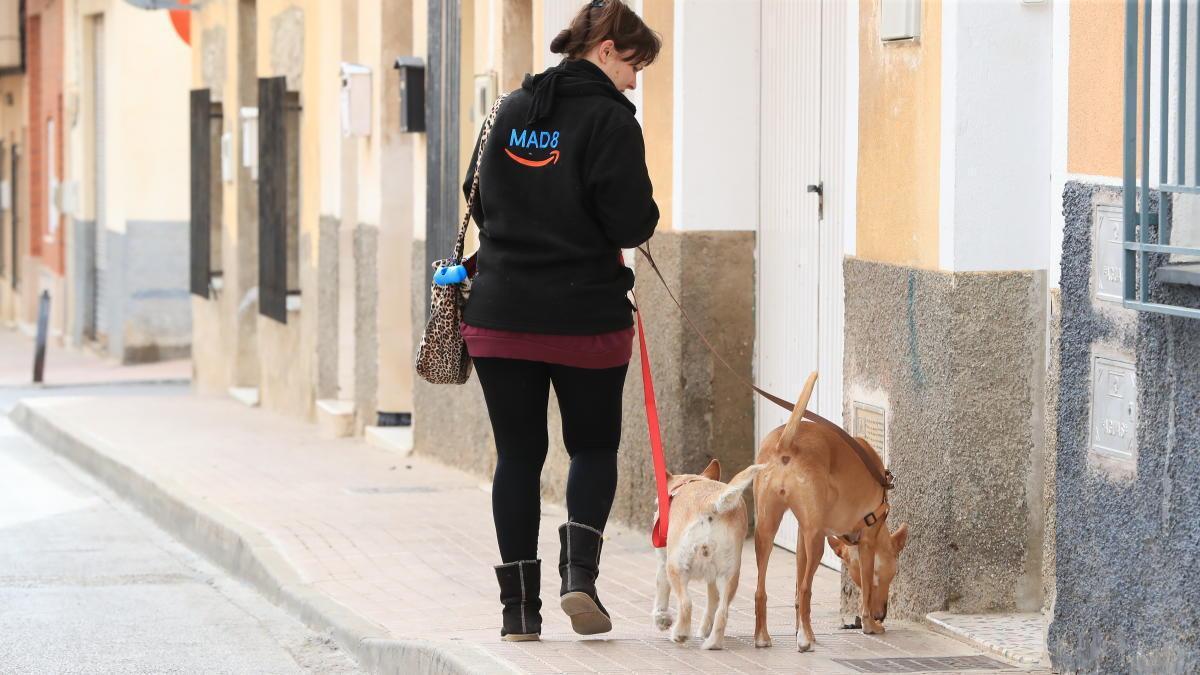 Una persona saca a sus perros, actividad que sí está permitida.