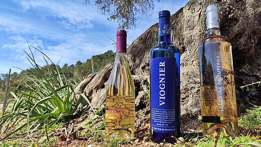 Son Vich de Superna presenta nuevos vinos