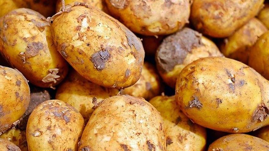 Agricultores malagueños exigen medidas ante la crisis de la patata