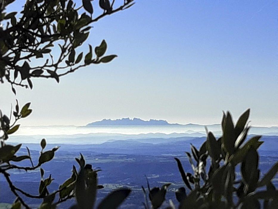 Montserrat des de Queralt.