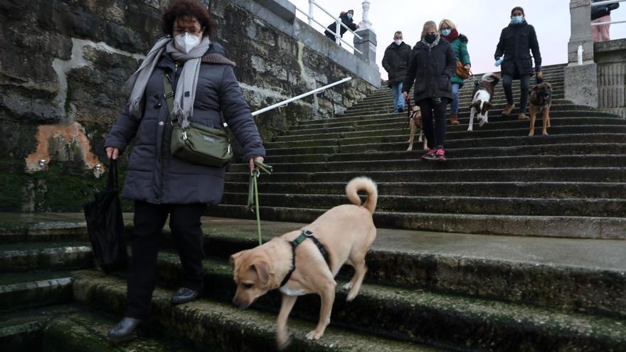 Polémica por los anzuelos en San Lorenzo: los dueños de perros denuncian accidentes debido a objetos de pesca