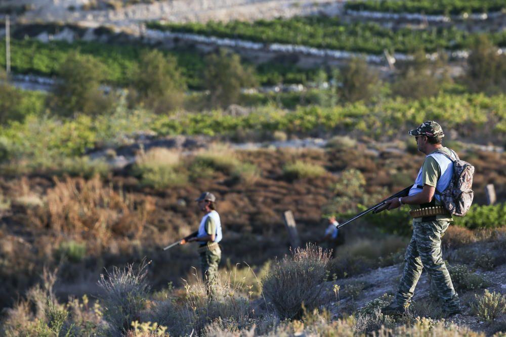 Diez mil cazadores inician la temporada de caza del conejo