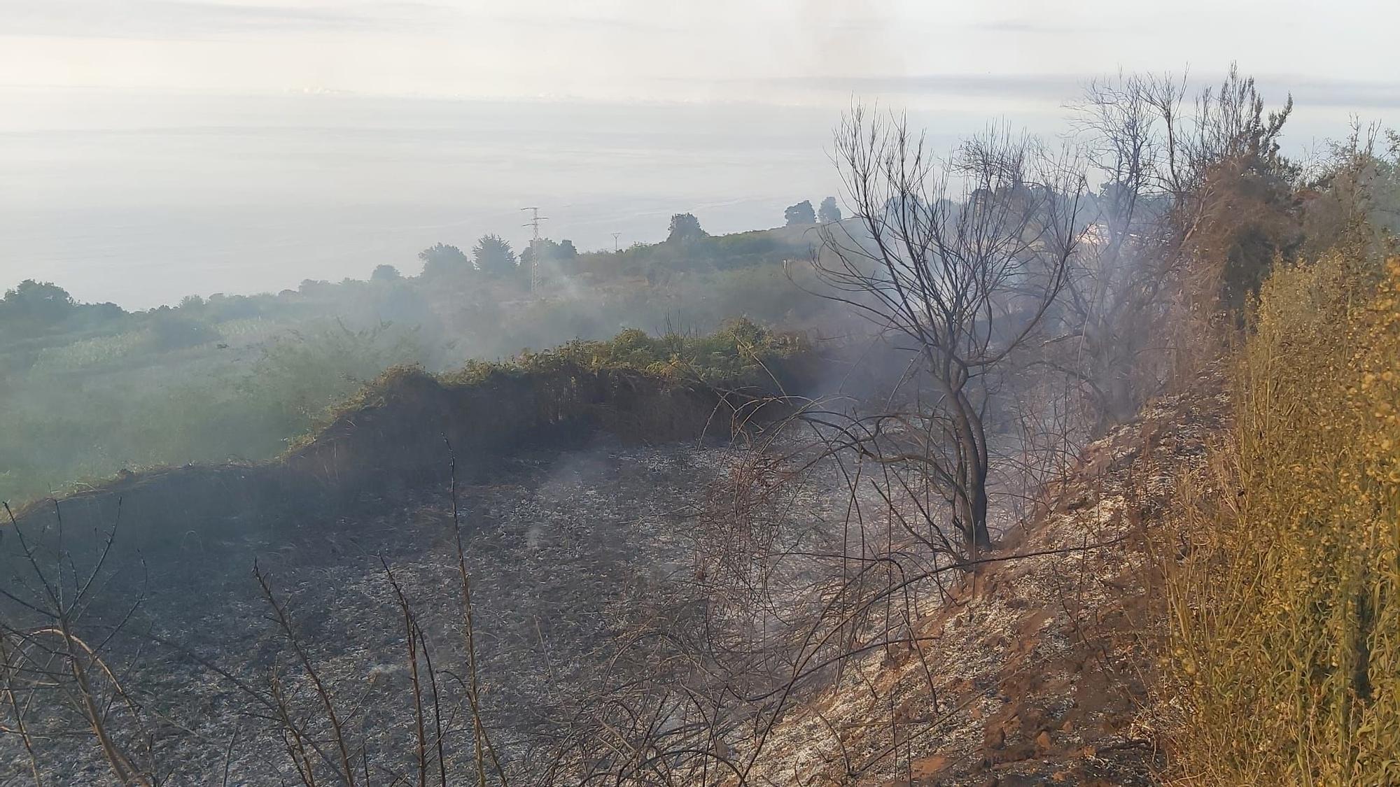 Conato de incendio en Cerrogordo, Icod de los Vinos.