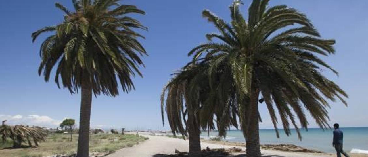 Sagunt y Canet reservan más de 210.000 euros para unir sus paseos