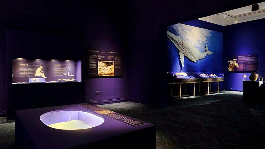 El Museu de Prehistòria estudia  la Mediterrània de fa 30.000 anys