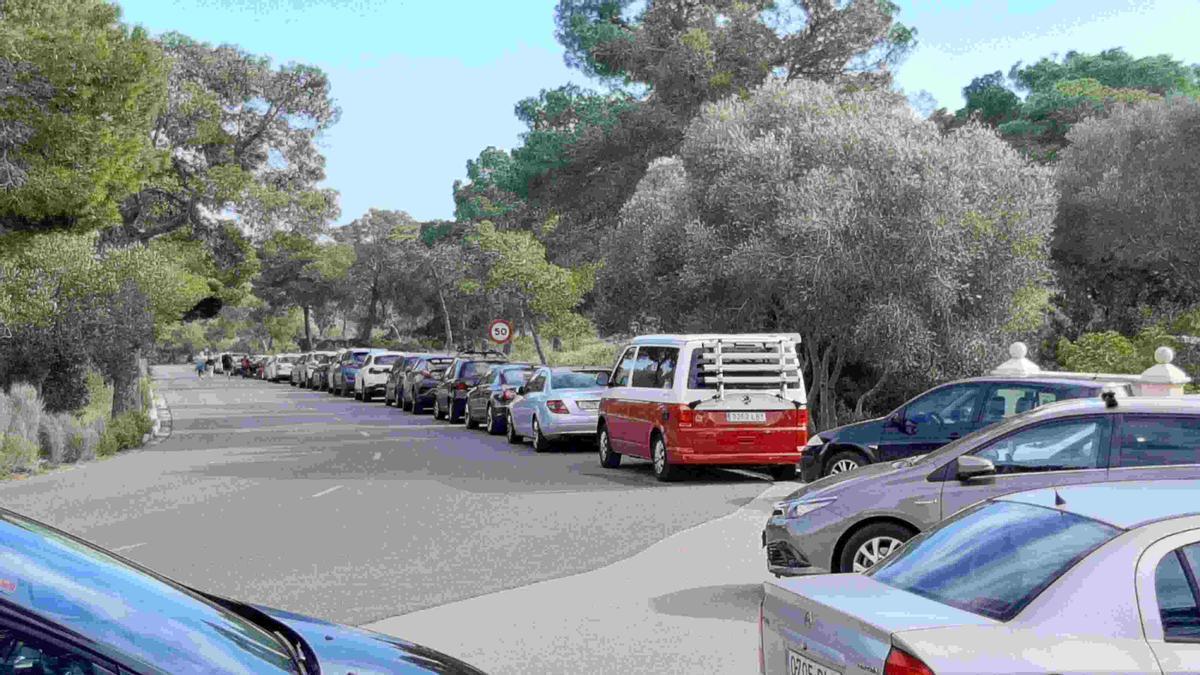 Numerosos coches aparcados el domingo pasado en la bajada hacia Portals Vells.