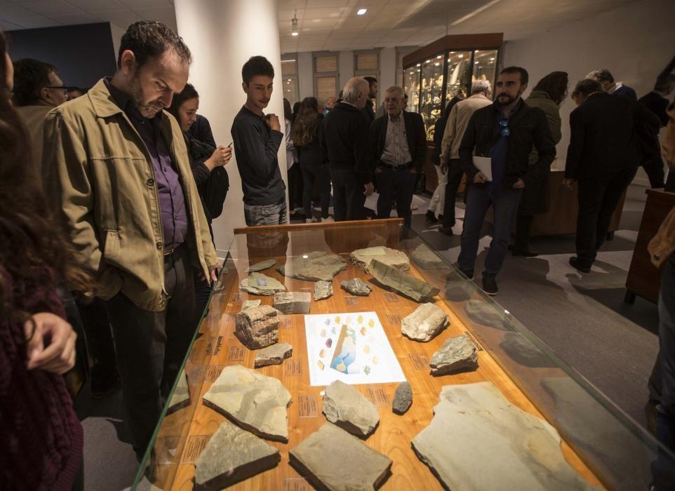 Inauguración del Museo de Geología de la Universidad de Oviedo