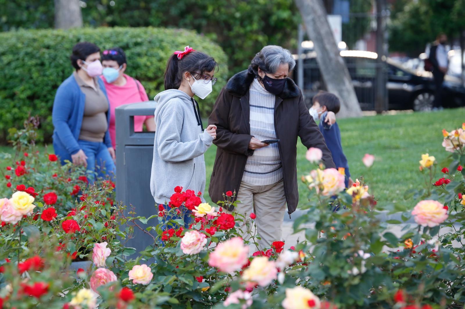 Jardines de Juan Carlos I.jpeg